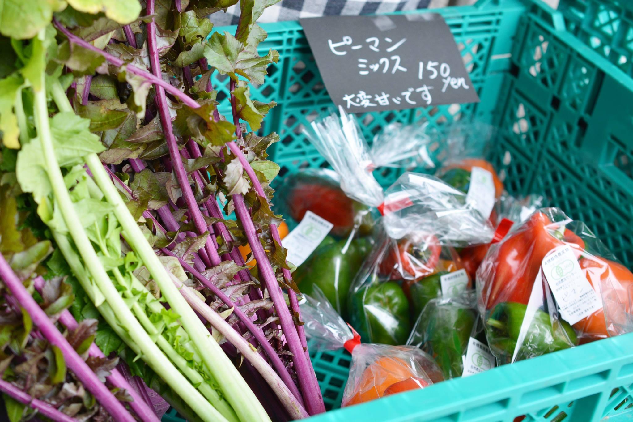無農薬野菜各種取り揃え